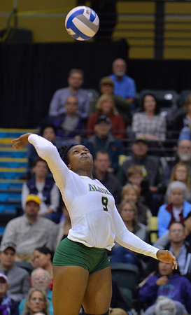 ANCHORAGE, AK - SEPTEMBER 9:  Chrisalyn Johnson #9 of the Alaska Anchorage Seawolves takes a swing in a match between the Alaska Anchorage Seawolves and the Cal State San Bernardino Coyotes at the Alaska Airlines Center in Anchorage, Alaska. The Coyotes won 3-2.  (Photo by Sam Wasson)