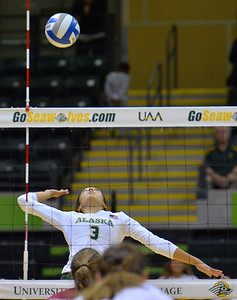 ANCHORAGE, AK - SEPTEMBER 7:  Anais Vargas #3 of the UAA Seawolves takes a swing in a match between the Alaska Anchorage Seawolves and the Chico State Wildcats at the Alaska Airlines Center in Anchorage, Alaska. The Seawolves won 3-1.  (Photo by Sam Wasson)