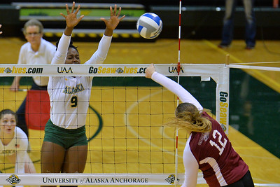 ANCHORAGE, AK - SEPTEMBER 7:  Chrisalyn Johnson #9 of the UAA Seawolves goes up for a block against Makaela Keeve #12 of the Chico State Wildcats in a match between the Alaska Anchorage Seawolves and the Chico State Wildcats at the Alaska Airlines Center in Anchorage, Alaska.  The Seawolves won 3-1.  (Photo by Sam Wasson)