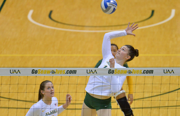 ANCHORAGE, AK - SEPTEMBER 7:  Vanessa Hayes #18 of the UAA Seawolves takes a swing in a match between the Alaska Anchorage Seawolves and the Chico State Wildcats at the Alaska Airlines Center in Anchorage, Alaska.  The Seawolves won 3-1.  (Photo by Sam Wasson)