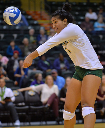 ANCHORAGE, AK - SEPTEMBER 7:  Taylor Noga #5 of the UAA Seawolves digs a ball in a match between the Alaska Anchorage Seawolves and the Chico State Wildcats at the Alaska Airlines Center in Anchorage, Alaska. The Seawolves won 3-1.  (Photo by Sam Wasson)