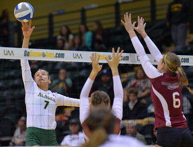 ANCHORAGE, AK - SEPTEMBER 7:  Leah Swiss #7 of the UAA Seawolves tips a ball over the block of Anna Baytosh #6 of the Chico State Wildcats in a match between the Alaska Anchorage Seawolves and the Chico State Wildcats at the Alaska Airlines Center in Anchorage, Alaska. The Seawolves won 3-1.  (Photo by Sam Wasson)