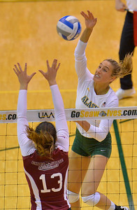 ANCHORAGE, AK - SEPTEMBER 7:  Leah Swiss #7 of the UAA Seawolves takes a swing against Alex Boyle #13 of the Chico State Wildcats in a match between the Alaska Anchorage Seawolves and the Chico State Wildcats at the Alaska Airlines Center in Anchorage, Alaska. The Seawolves won 3-1.  (Photo by Sam Wasson)