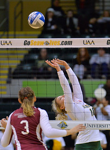 ANCHORAGE, AK - SEPTEMBER 7:  Madison Fisher #10 of the UAA Seawolves back sets a ball in a match between the Alaska Anchorage Seawolves and the Chico State Wildcats at the Alaska Airlines Center in Anchorage, Alaska. The Seawolves won 3-1.  (Photo by Sam Wasson)