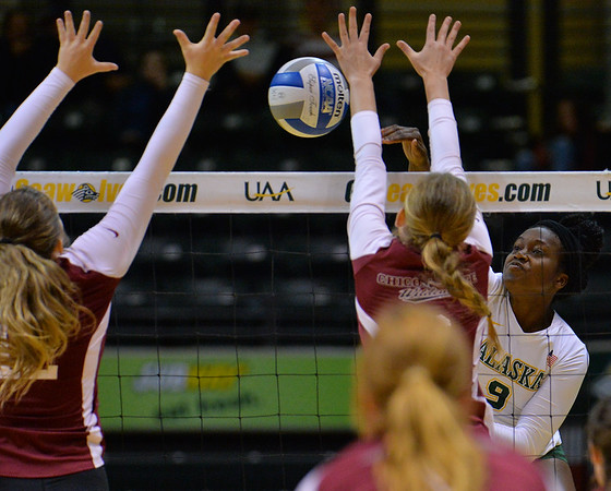 ANCHORAGE, AK - SEPTEMBER 7:  Chrisalyn Johnson #9 of the UAA Seawolves hits a ball past the the Chico State Wildcats blockers in a match between the Alaska Anchorage Seawolves and the Chico State Wildcats at the Alaska Airlines Center in Anchorage, Alaska. The Seawolves won 3-1.  (Photo by Sam Wasson)