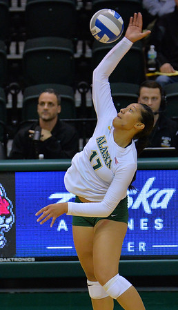 ANCHORAGE, AK - SEPTEMBER 7:  Diana Fa'amausili #17 of the UAA Seawolves takes a swing in a match between the Alaska Anchorage Seawolves and the Chico State Wildcats at the Alaska Airlines Center in Anchorage, Alaska. The Seawolves won 3-1.  (Photo by Sam Wasson)