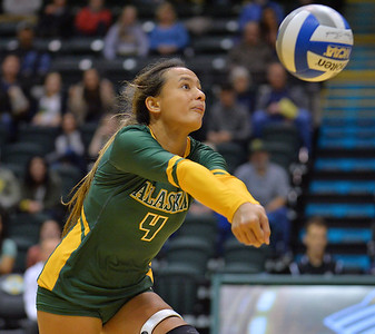 ANCHORAGE, AK - SEPTEMBER 7:  Keala Kaio-Perez #4 of the UAA Seawolves digs a ball in a match between the Alaska Anchorage Seawolves and the Chico State Wildcats at the Alaska Airlines Center in Anchorage, Alaska. The Seawolves won 3-1.  (Photo by Sam Wasson)