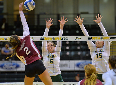 ANCHORAGE, AK - SEPTEMBER 7:  Casey Davenport #6 (L) and Tara Melton #15 of the UAA Seawolves go up for a block attempt against Olivia Mediano #2 of the Chico State Wildcats in a match between the Alaska Anchorage Seawolves and the Chico State Wildcats at the Alaska Airlines Center in Anchorage, Alaska. The Seawolves won 3-1.  (Photo by Sam Wasson)