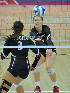 TUCSON, AZ - SEPTEMBER 15:  Kiley Tonge #7 of the New Mexico State Aggies digs a ball in a match between the New Mexico State Aggies and the Illinois State Redbirds at the McKale Center in Tucson, Arizona. The Redbirds won 3-0.  (Photo by Sam Wasson)