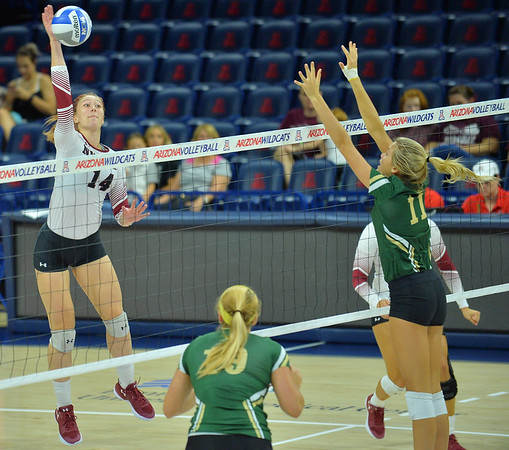 TUCSON, AZ - SEPTEMBER 16:  Kassandra Tohm #14 of the New Mexico State Aggies takes a swing against Taylor Heishman #11 of the William & Mary Tribe in a match between the New Mexico State Aggies and the William & Mary Tribe at the McKale Center in Tucson, Arizona. The Aggies won 3-0.  (Photo by Sam Wasson)