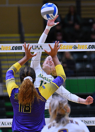 ANCHORAGE, AK - AUGUST 23:  Vera Pluharova #14 of the Alaska Anchorage Seawolves takes a swing against Deyzha Samuelu #18 of the Western New Mexico Mustangs during their match at the Alaska Airlines Center on August 23, 2018 in Anchorage, Alaska. The Seawolves won 3-0.  (Photo by Sam Wasson)