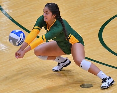 ANCHORAGE, AK - AUGUST 23:  Anjoilyn Vreeland #3 of the Alaska Anchorage Seawolves dis a ball against the Western New Mexico Mustangs during their match at the Alaska Airlines Center on August 23, 2018 in Anchorage, Alaska. The Seawolves won 3-0.  (Photo by Sam Wasson)