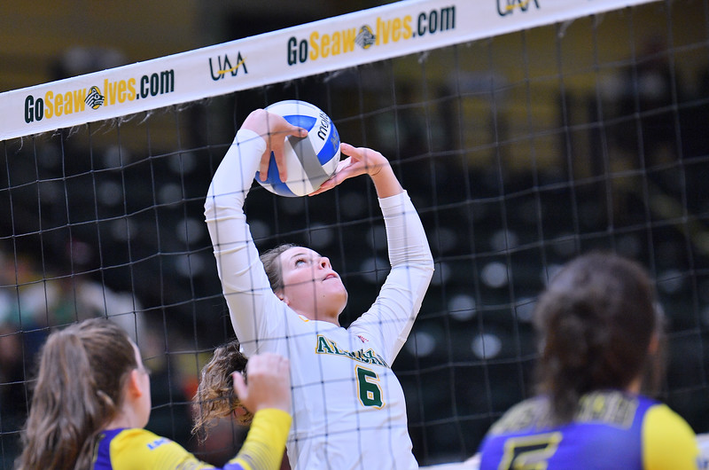 ANCHORAGE, AK - AUGUST 23:  Casey Davenport #6 of the Alaska Anchorage Seawolves sets a ball against the Western New Mexico Mustangs during their match at the Alaska Airlines Center on August 23, 2018 in Anchorage, Alaska. The Seawolves won 3-0.  (Photo by Sam Wasson)