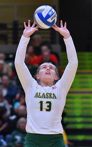 ANCHORAGE, AK - AUGUST 23:  Ellen Floyd #13 of the Alaska Anchorage Seawolves sets a ball against the Western New Mexico Mustangs during their match at the Alaska Airlines Center on August 23, 2018 in Anchorage, Alaska. The Seawolves won 3-0.  (Photo by Sam Wasson)