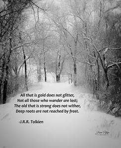 1802-6818-jpp 11x14_Tolkien Quote