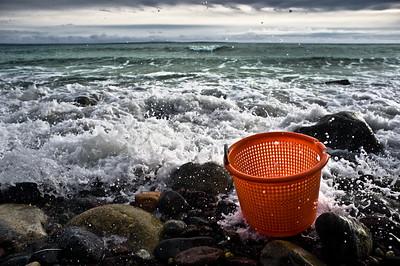 L'écumoir des mers