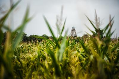 La cathédrale dans les champs (3)