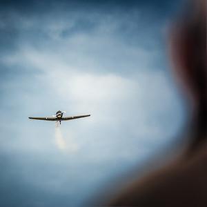 Fly i sikte