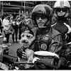 Dog, helmet and goggles