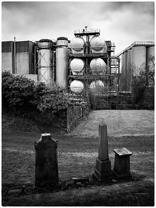 The Glasgow Necropolis (2)