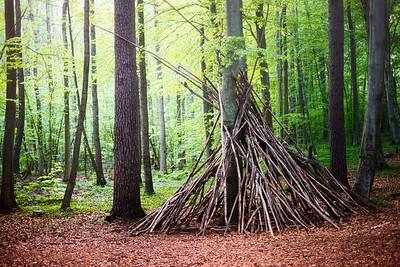 Hortenskogen
