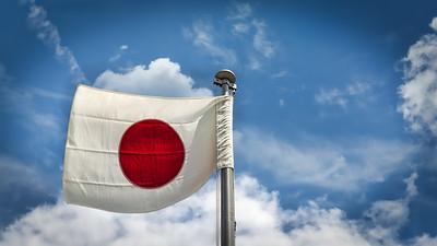 Japanese Flag 5