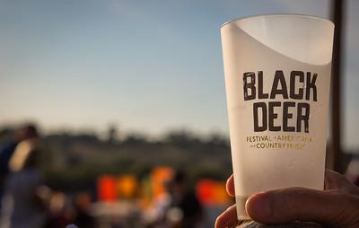 2019 - Black Deer Festival 036