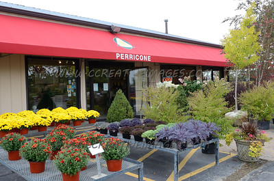 Perricone Garden Center Mixer 9/17/13. Mchenry Area Chamber of Commerce.