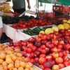 Melrose Farmers Market - produce gleaning and hunger advocacy