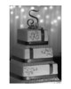 JNPhoto-BIZ-Webber-6-30-2012-3269