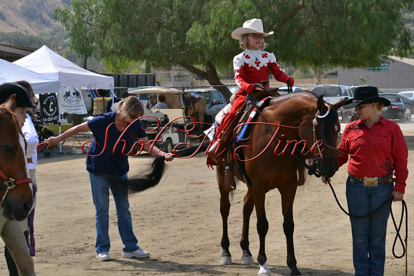 Leadline, Trail and Reining