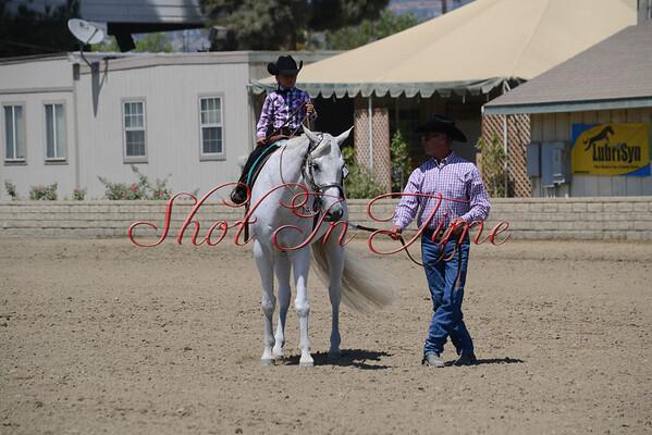 Saturday Equitation and Pleasure