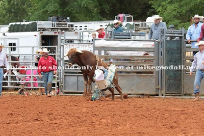 Steer Riding from Saturday K-5
