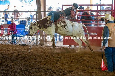 Jr Boy Bareback Steer