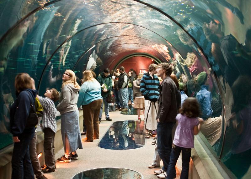 Passages of the Deep at the Oregon Coast Aquarium