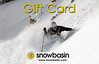 Snowbasin Gift Card skier powder