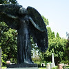 Black Angel in Oakland