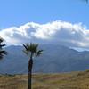 Living Desert, California