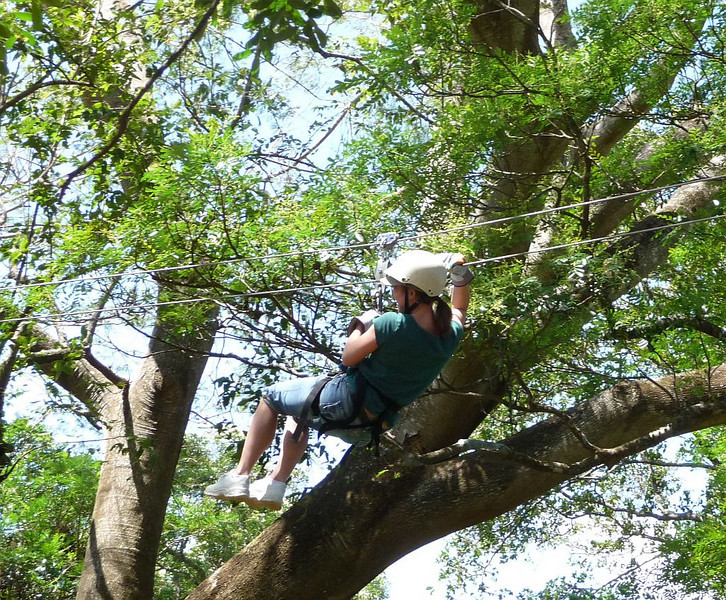 Soon Kim is zipping through the trees.