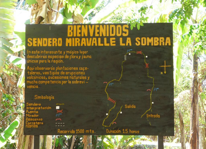 """Since we had to have our """"fun"""" day first, we opted for an eleven stage """"zip line"""" course in the treetops.  The sign says you will see flora & fauna as you traverse 1,500 meters (about a mile) in an hour and a half."""