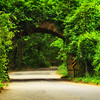 Taken on Long Island, NY.  I loved how nature was taking over the man made arch.