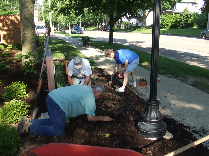 Ron Schaad, Chuck Knudson and Fran Tatum plant begonias.