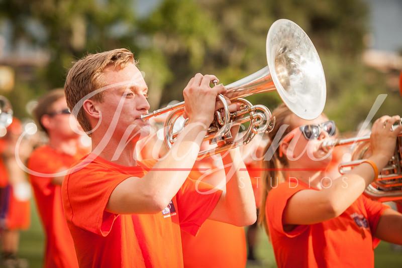 clemson-tiger-band-fsu-2014-100