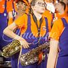 clemson-tiger-band-fsu-2014-151