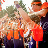 clemson-tiger-band-georgia-2014-62