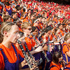 clemson-tiger-band-georgia-2014-32