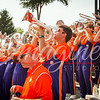 clemson-tiger-band-georgia-2014-22