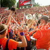 clemson-tiger-band-georgia-2014-61