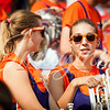 clemson-tiger-band-georgia-2014-25