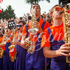 clemson-tiger-band-georgia-2014-21